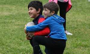 rugby mini